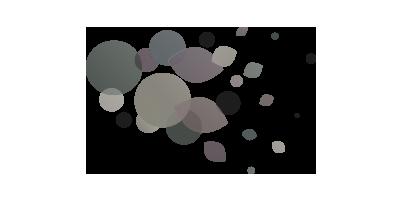 image-28-client